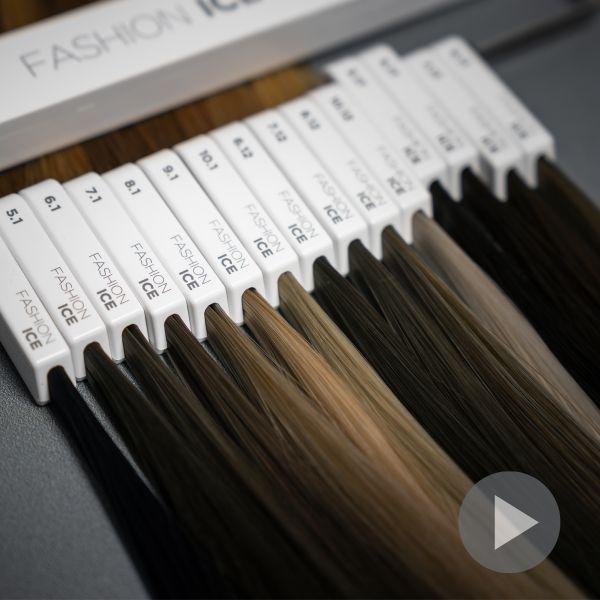 education-by-newsha-color-kompetenz
